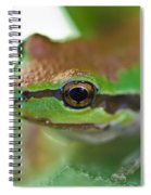 Frog Close Up 1 Spiral Notebook