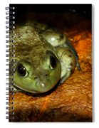 Frog Love Spiral Notebook
