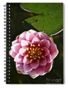 Frogless Spiral Notebook