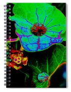 From The Psychedelic Garden Spiral Notebook