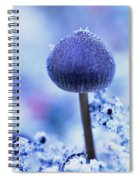 Frost Covered Mushroom, North Canol Spiral Notebook