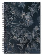 Frost Ferns Spiral Notebook
