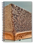 Frost On Copper Newel Spiral Notebook
