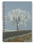 Frost On The Big Tree  Spiral Notebook