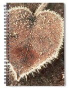 Frosted Fall Leaves Spiral Notebook