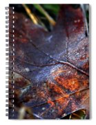 Frosted Fall Spiral Notebook