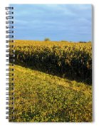 Frosted Soybeans Spiral Notebook