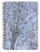 Frosted Tree Spiral Notebook