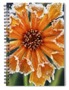 Frosty Flower Spiral Notebook