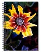 Frosty Susan Spiral Notebook