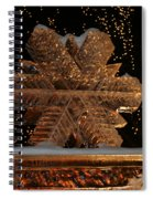Frozen Flake Spiral Notebook