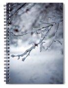 Frozen Path Spiral Notebook