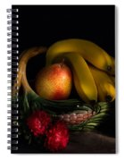 Fruit Still Life With Wine Spiral Notebook
