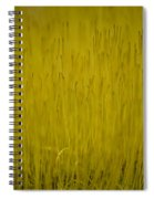 Fruiting Moss Spiral Notebook