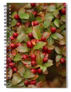 Fruits Of The Season Spiral Notebook