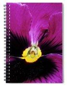 Fuchsia Pansy Spiral Notebook