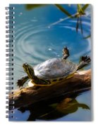 Funny Turtle Catching Some Rays Spiral Notebook