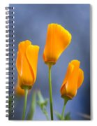 Furled Poppy Spiral Notebook
