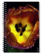 Furnace In A Tulip Spiral Notebook