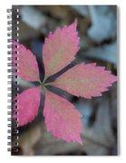 Fushia Leaf 2 Spiral Notebook