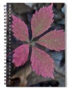 Fushia Leaf Spiral Notebook