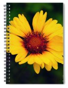 Gaillardia Spiral Notebook