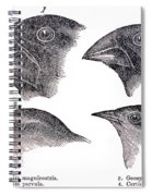 Galapagos Finches Spiral Notebook