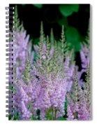 Garden Forest Spiral Notebook