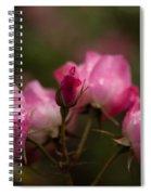 Garden Of Grace Spiral Notebook