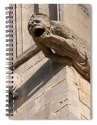 Gargoyles On Ely Cathedral Spiral Notebook