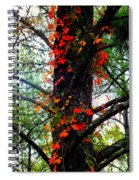 Garland Of Autumn Spiral Notebook