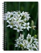Garlic Chive Blooms Spiral Notebook