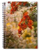 Gathering Of Radiance Spiral Notebook