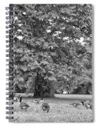 Geese By The River Spiral Notebook