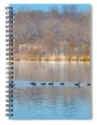 Geese In The Schuylkill River Spiral Notebook