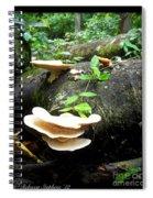 Geisha's Fan Spiral Notebook