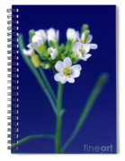 Genetically Modified Plant Spiral Notebook
