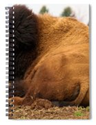 Gentle Giant Spiral Notebook