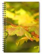 Gentle Glow Spiral Notebook