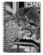 Gentleness Monochrome Spiral Notebook