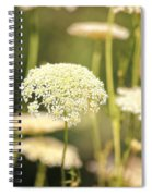 Gently Spiral Notebook