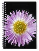 Gerber Dasies Spiral Notebook