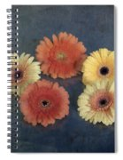 Gerberas Spiral Notebook