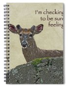 Get Well Card - Whitetail Deer In Velvet Spiral Notebook
