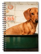 Get Your Hot Dogs Spiral Notebook