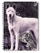 Ghost The Wolf Spiral Notebook