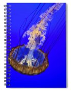Ghostly Jellyfish Spiral Notebook
