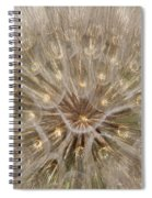 Giant Dandelion Spiral Notebook