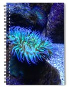 Giant Green Sea Anemone Spiral Notebook