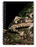 Giant Leaf Tail Gecko Spiral Notebook